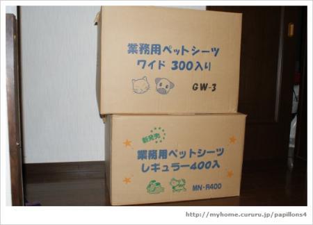 9_20100206205702.jpg