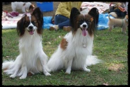 アデラちゃん&ルカ