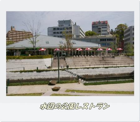 IMGP6488.jpg