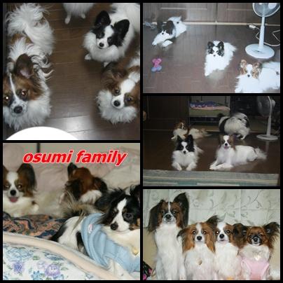 osumifamily.jpg