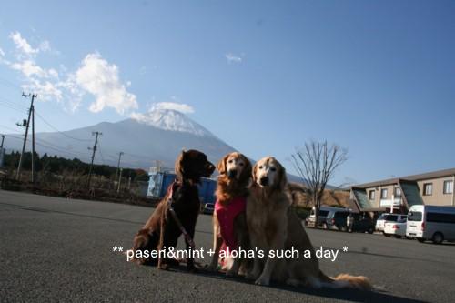 23富士山paseminalo