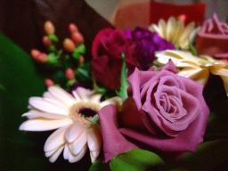 0903flower5.jpg