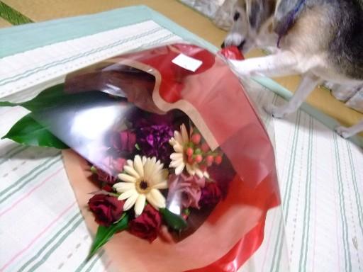 0903flower_pa1.jpg