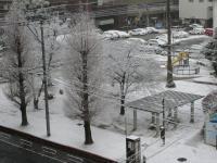 あっという間に雪景色~♪