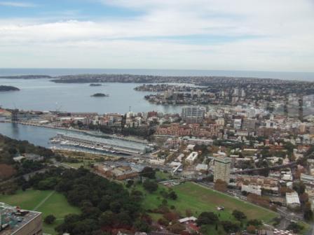シドニー・タワーから湾を望む