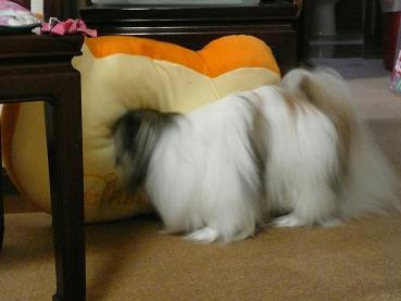 2010.10.24