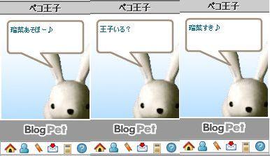 20081122-3.jpg