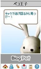 20081122-4.jpg