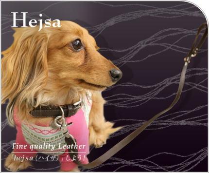 heisa2.jpg