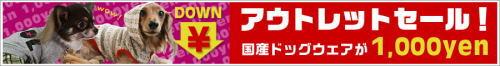 idols6.jpg
