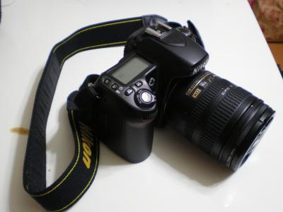 d80.jpg