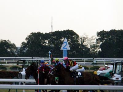 090117 miyabi start