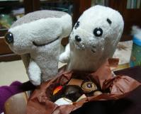 chocolate1-2