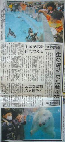 yagiyamamatsushima