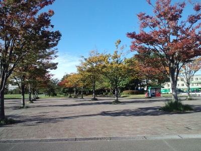 11月初頭の公園