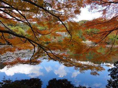 京都のどこか