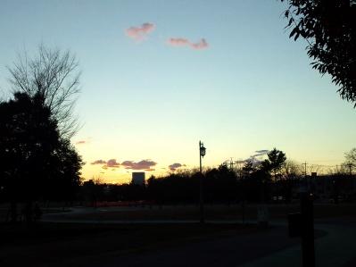 公園の夕日 一年の終わり