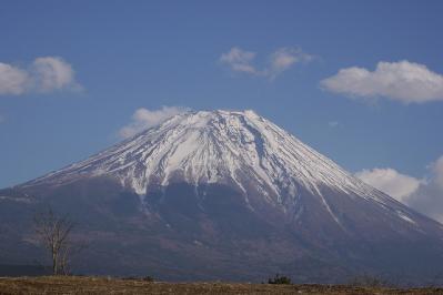 でっかい富士山