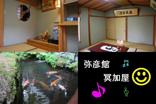 DSC_0184niigata.jpg