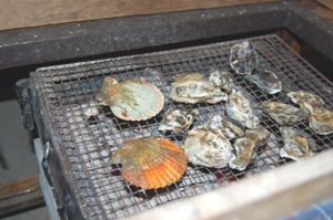 11月23日 有明牡蠣焼き ブログ