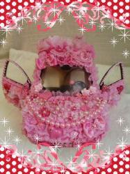 pink tomo pink