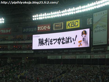 100601pipihiyo-3.jpg