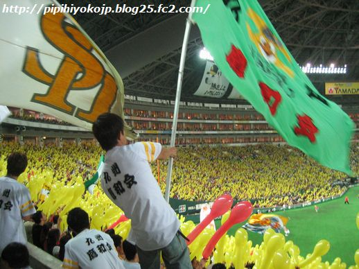 100926pipihiyo-3.jpg