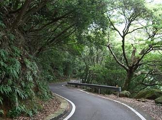 屋久島 (7)