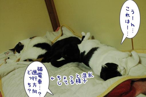 01_20110618191006.jpg