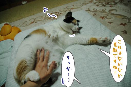 02_20090927131820.jpg