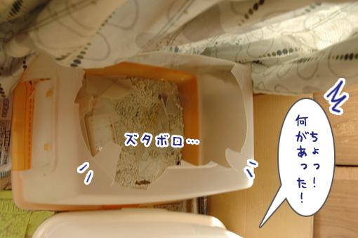 02_20091107011048.jpg