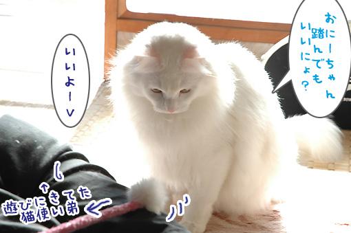 02_20100106192134.jpg