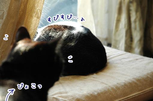 02_20110330144705.jpg