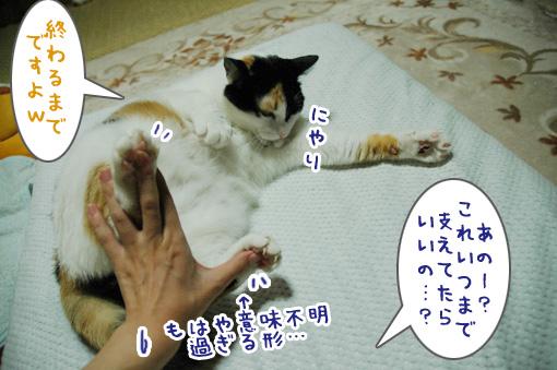03_20090927131820.jpg