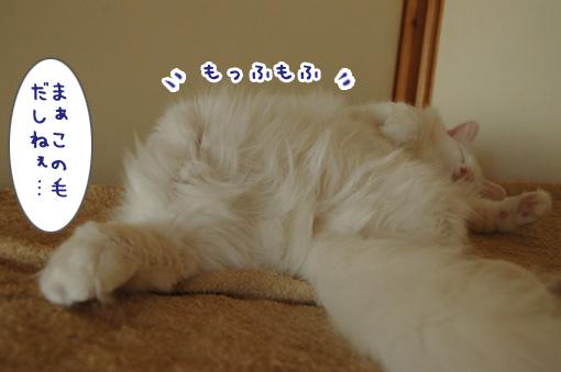 03_20091007234312.jpg