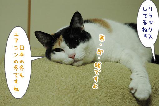 03_20091021000700.jpg