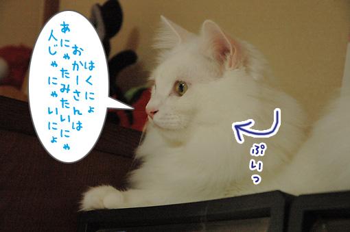 03_20091028000208.jpg