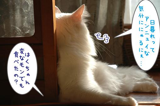 03_20091030001736.jpg