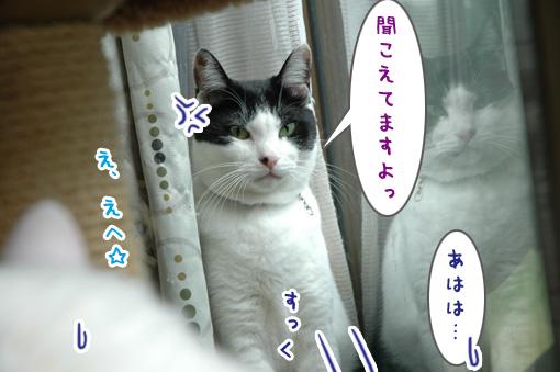 04_20090924224802.jpg
