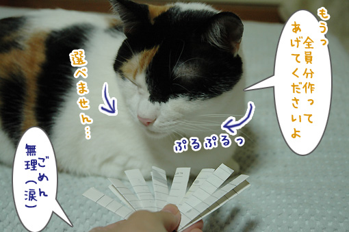 04_20091001225329.jpg