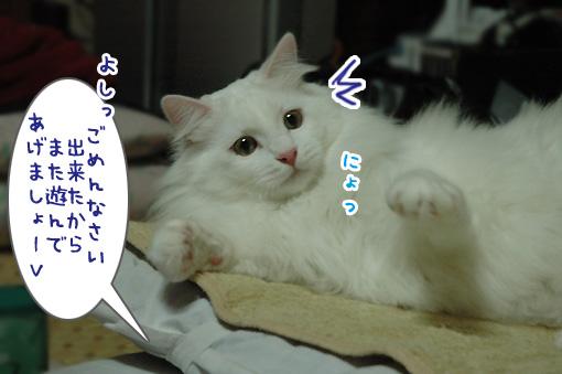 04_20091122215716.jpg