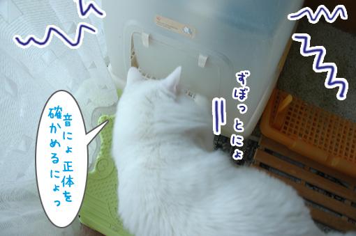 04_20091221202710.jpg