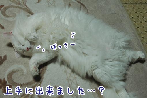 04_20100129161823.jpg