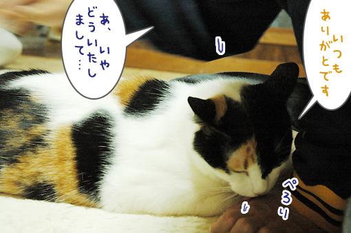 04_20101021180613.jpg