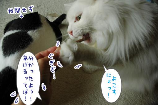 04_20110531174001.jpg