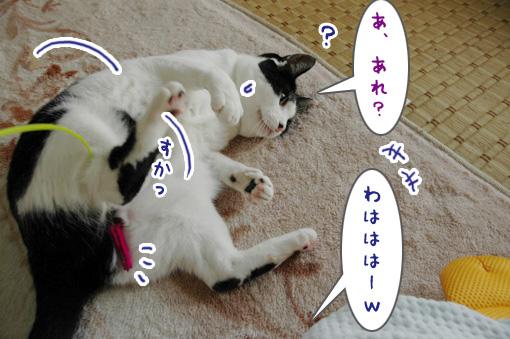 05_20090918000251.jpg