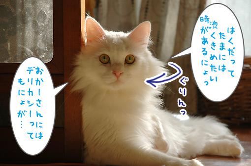 05_20091030001708.jpg