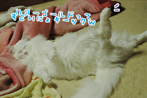 05_20091211175302.jpg