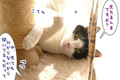 05_20100305180559.jpg