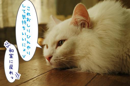 05_20100910190233.jpg